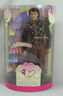 045 - Ken doll playline